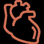 Omega-3 - Herz